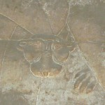 aegypten2011_020