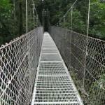 costarica2008_019